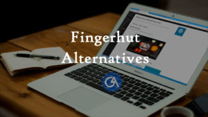 stores-like-fingerhut-alternatives-companies